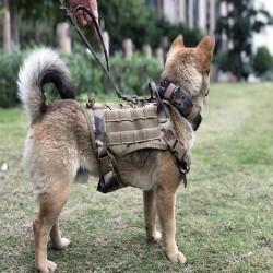 Arnés MOLLE Canino Edición Entrenamiento Combate Militar